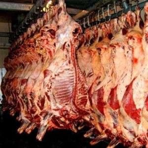牦牛肉四分体-0
